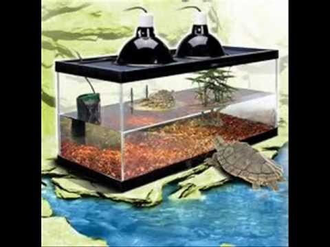 How To Set Up A Aquatic Turtle Tank - YouTube