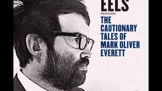 Eels   Mistakes of My Youth
