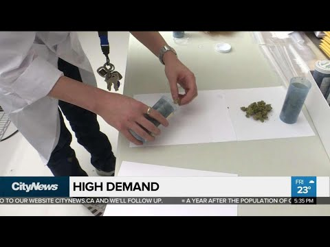 'High' Demand for legal weed expected