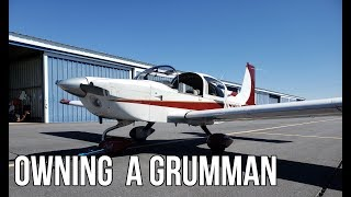 The Cost Of Owning A Grumman Tiger Airplane