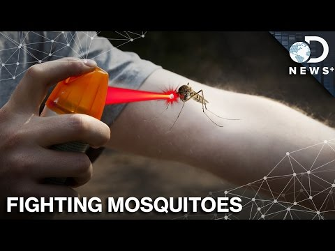 Chemicals, Lasers or Garlic: What's Best For Fighting Mosquitoes?