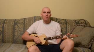 Homemade guitar   DGBE tuning