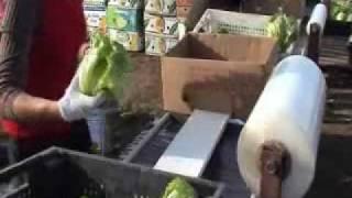 Упаковка салата в стрейч