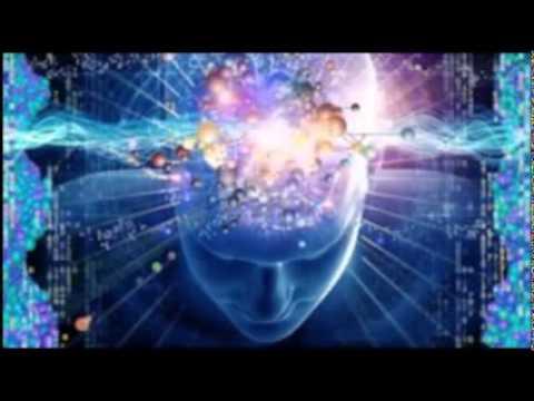 Das Programm wird die Erschließung des kreativen Potenzials des Gehirns