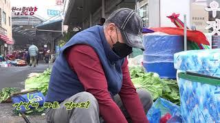 충남 광천젓갈시장 원더플내고향