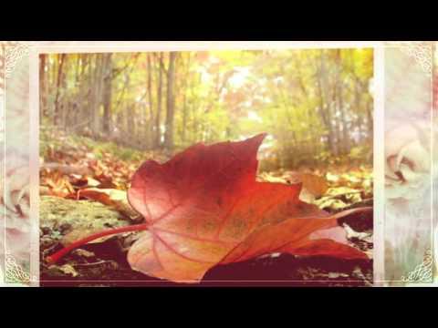 Поздравления с днем пожилого человека! Красивая видеооткрытка для 1 октября.