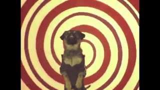 Magic Trix - U Got A Message (OFFICIAL VIDEO)