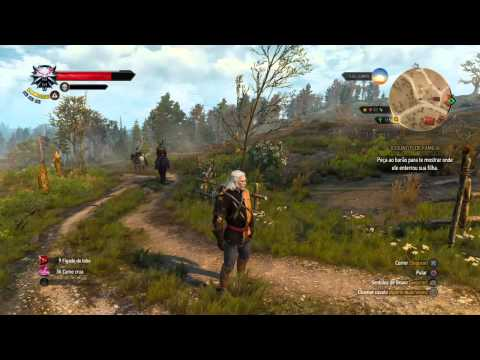 The Witcher 3: Wild Hunt surspeed bug