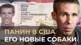 Алексей Панин не выдержал угнетения! Взял собак в США