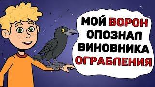 Мой ВОРОН опознал виновника ОГРАБЛЕНИЯ