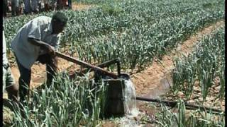 Part.1- Madagascar - Integrated rural Development : IFAD  in Upper Mandrare Basin - PHBM