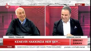 Kenevir hakkında her şey / Gürkan Hacır ile Şimdiki Zaman / 3. Bölüm-02.02.2019