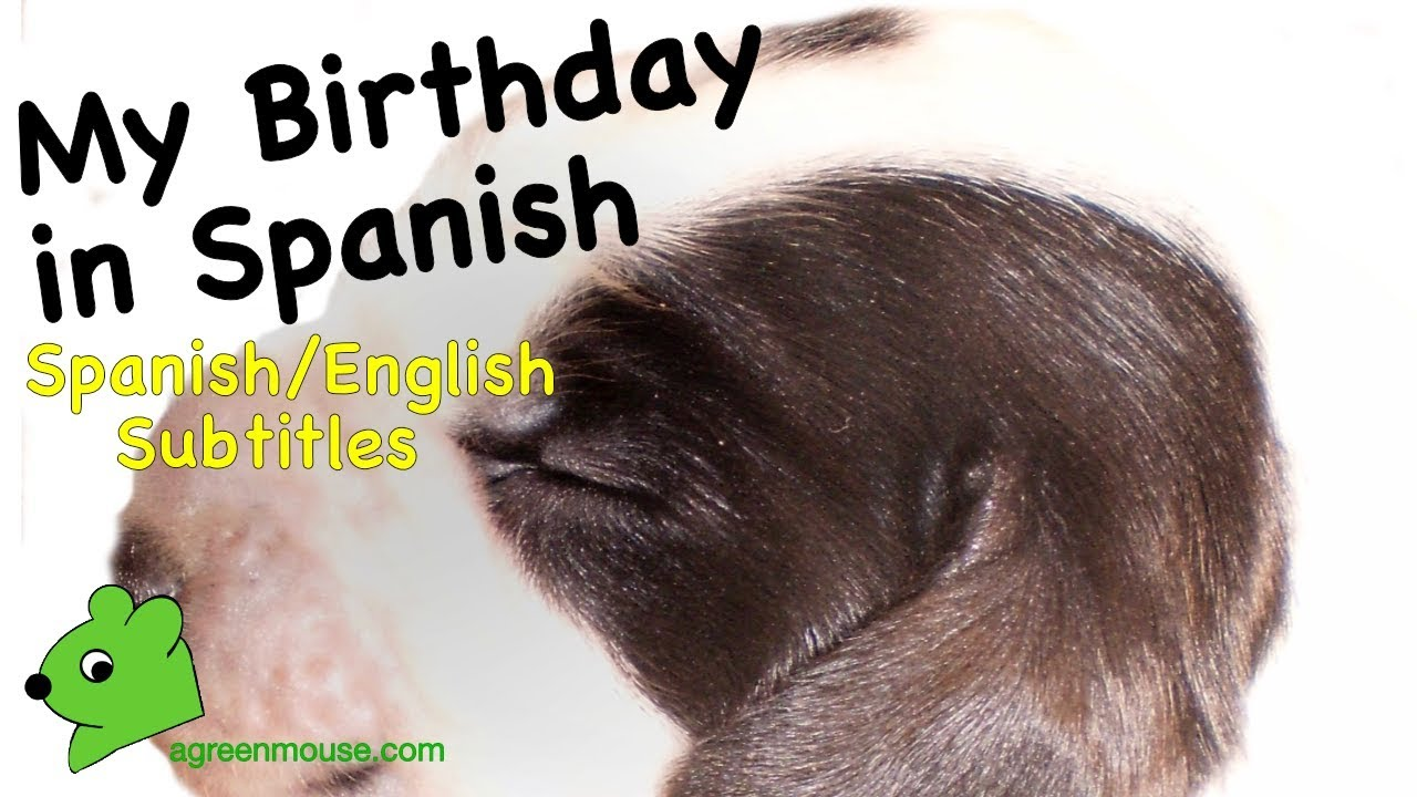 My Birthday in Spanish + Practice in a Story - YouTube