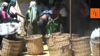 Luxury hotel review, Ceylon Tea Trails, Sri Lanka