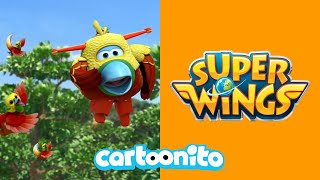 Super Wings | Fly Like a Bird! | Cartoonito