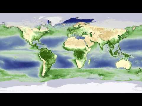Animation: Yearly biosphere cycle shows earth 'breathing'