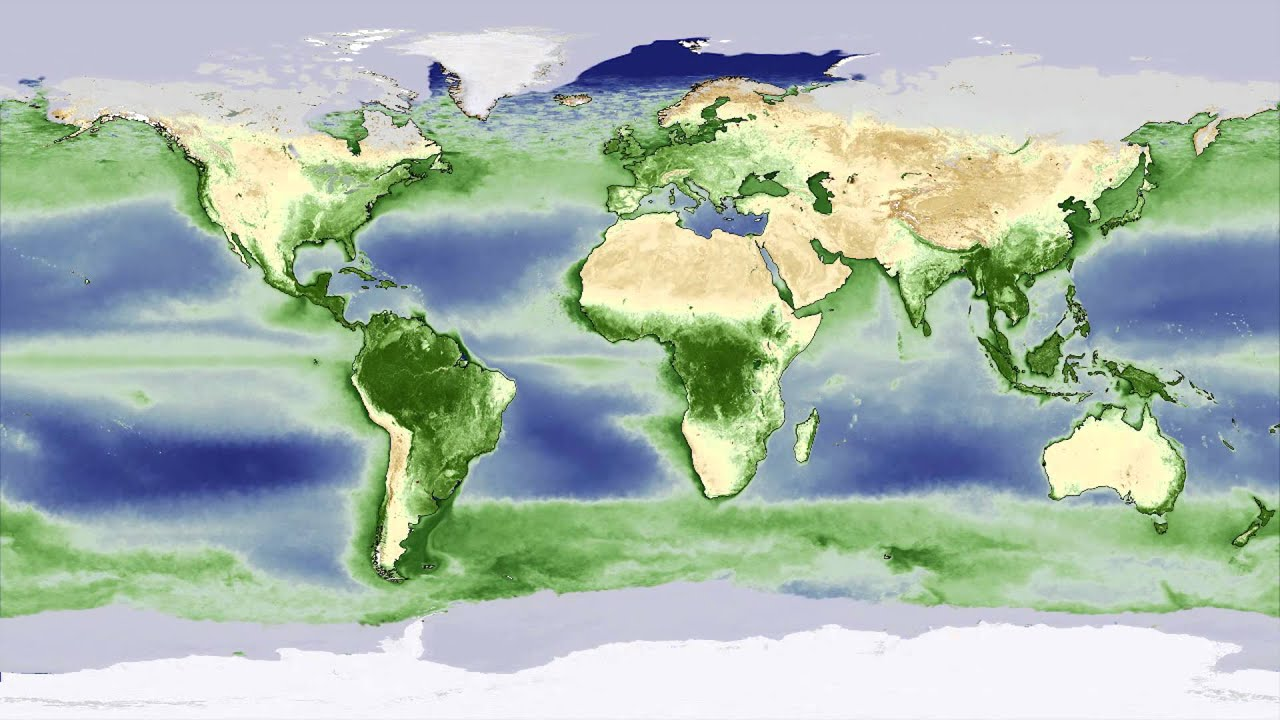 Animation Yearly Biosphere Cycle Shows Earth Breathing