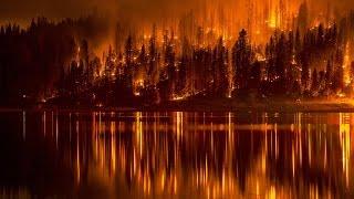 Взгляд изнутри: Операция лесной пожар (Документальные фильмы National Geographic HD)