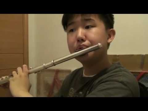 Yesterday Once More (The Carpenters) - flute cover