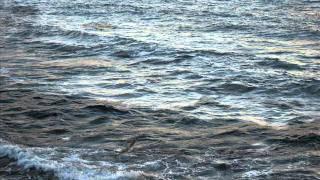 """..Alghero sempre...""""la canzone del mare""""  ....wmv"""