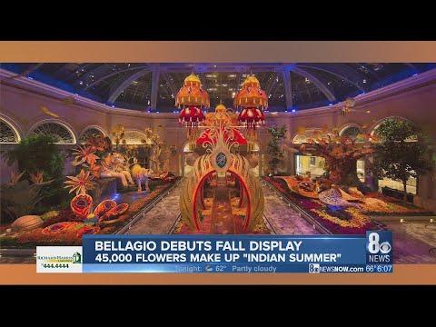 Bellagio ushers in autumn with vibrant display celebrating India