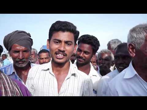 Manaparai Cattle Market Report 2 - மோடி அரசை மாத்தனும்– மணப்பாறை கொதிக்கிறது