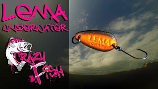 Приманки под водой. Crazy Fish. Lema. Underwater.