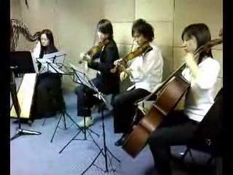 Musicista Harp Quartet