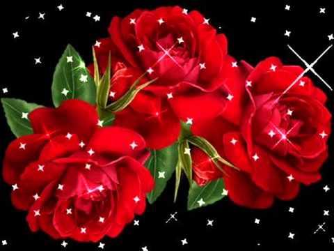 Die Flippers - Rote Rosen