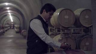 Wine Photography Videography Marketing for Wineries