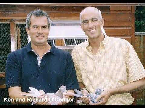 Video 55: Richard & Ken O'Connor of Croydon: Premier Pigeon Racers