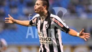 Fábio Ferreira do Botafogo