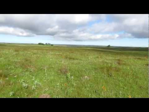 Short-grass Prairie - North Dakota