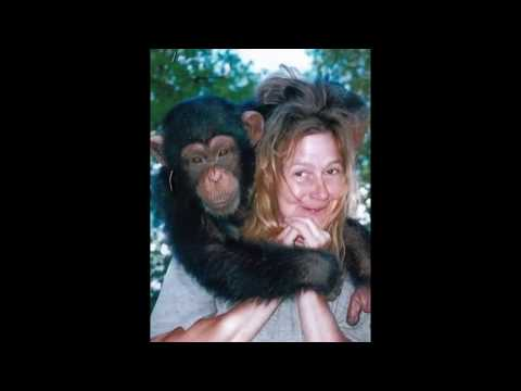 Charla Nash's body rejecting face transplant after chimp ...