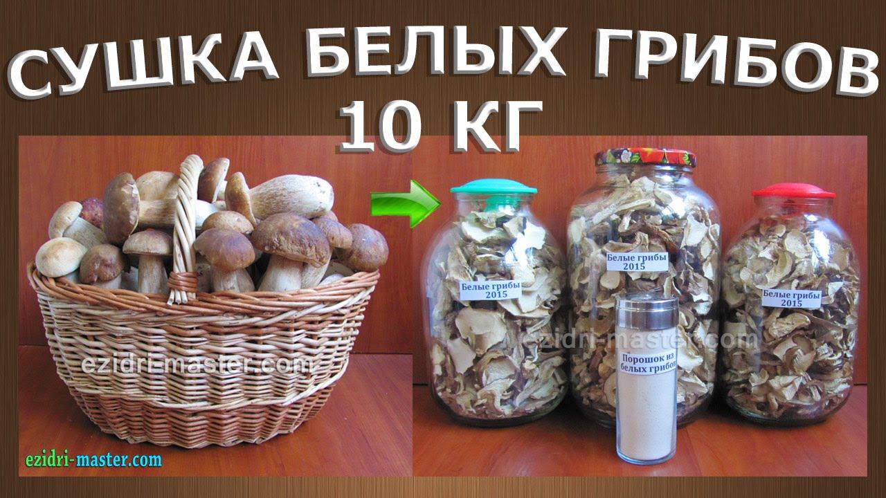 Сушилка для грибов над газовой плитой своими руками фото 100