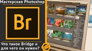 Курс «М.P.» Урок 1 -  Что такое Bridge и для чего он нужен?