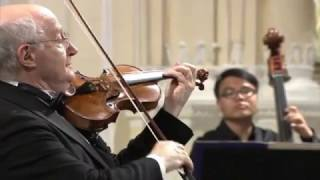 Antonio Vivaldi – Violin Concerto in g-minor, RV 317