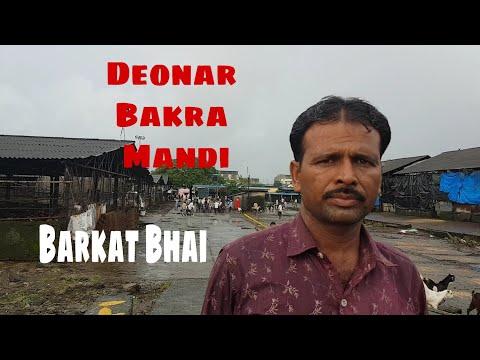 Deonar Main Business Kaise Kare | Barkat Bhai.