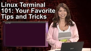 HakTip - Linux Terminal 101: Your Favorite Tips and Tricks