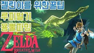 [용뿔노가다로돈벌기]젤린이를 위한꿀팁! 최강효율루피버는법. 젤다의전설: 야생의숨결 The legend of zelda :breath of the wild   GOTY 실황 에이사