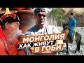 Все про Монголию: мы будем нырять и купаться! Жизнь в пустыне Гоби. Топливо, еда, дороги. И бараны