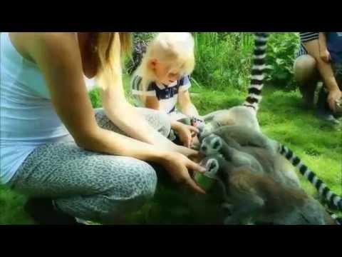 JohnOliver-Fake Denmark Zoo Commercial