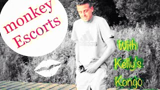 Monkey Escorts: w Kelly's Kongo (hire today)