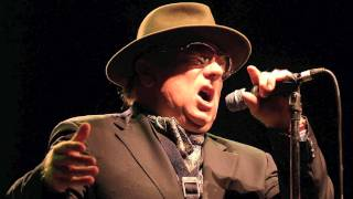 Tupelo Honey - Van Morrison (Live in San Francisco)