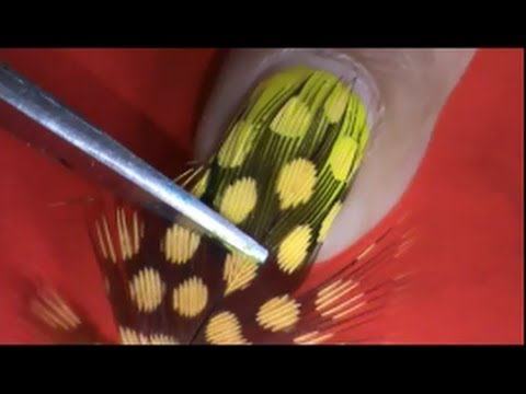 Feather nail art fancy nail art designs youtube feather nail art fancy nail art designs prinsesfo Gallery