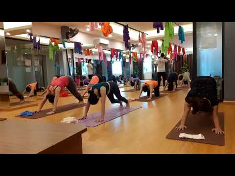 day 30 sun salutation  beginner yogapraveenyoga  youtube