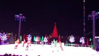 Sea world ice skating show