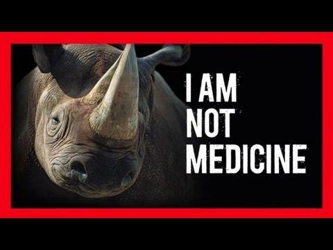 Stop Wildlife Crime: The Series - Rhinos (Video 4)   WWF