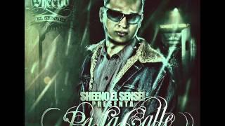 12. Musica Ligera - Sheeno 'El Sensei', Shako, Yelsid (Prod by Sheeno) - Pa La Calle (2011)
