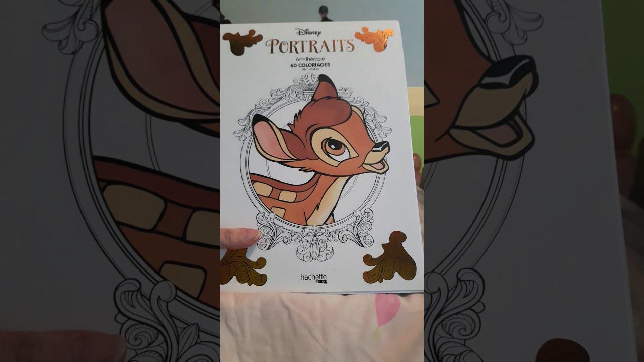 Presentation Livre De Coloriage Disney Portraits